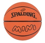 SPALDEEN HIGH BOUNCE NBA MINI BASKETBALL