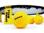 SPIKEBALL GAME KIT - ​OUT OF STOCK UNTIL AUGUST 2020